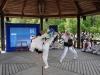 Frühlingsfest der Deutsch-Japanischen-Gesellschaft Augsburg und Schwaben