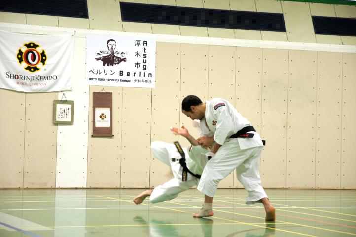 JapanFestival_2013_19-20012013_007