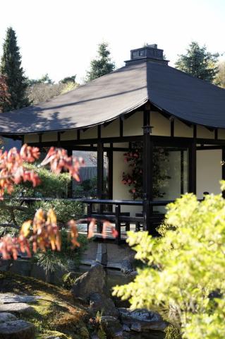 sk-berlin_bonsai-garten_ferch_18042014_005
