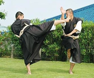 Goho © World Shorinji Kempo Organization