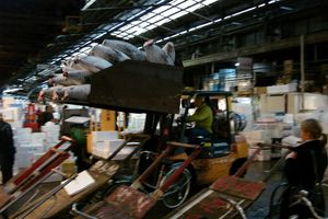 tsukiji_fischmarkt_320x200