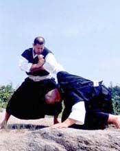 © World Shorinji Kempo Organization