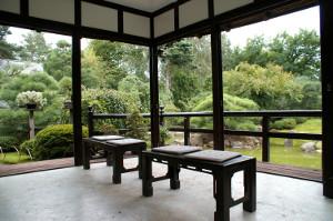 Bonsai-Garten_Ferch_2011_300x199