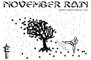 NovemberRain2014_Grafik
